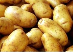Ziemniaki BIO