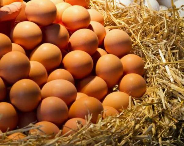 Jajka wiejskie/Jajka ekologiczne