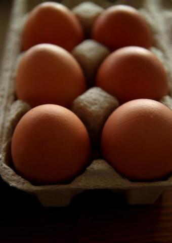 sprzedam jaja