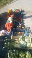 Warzywa i owoce dowoz gratis