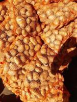 Ziemniaki jadalne od rolnika