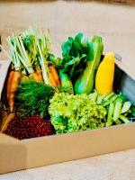 Świeże warzywa od Rolnika prosto z pola z dostawą do domu
