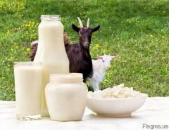 Kozie: mleko, masło, śmietana, sery DOWOZIMY, WYSYŁAMY