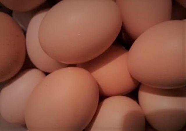 Sprzedam wiejskie jajka